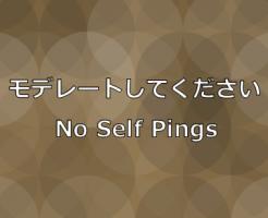 WordPressモデレートしてください(セルフピングバック)無効化プラグインNo Self Pings