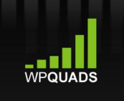 WP QUADSの使い方と設定方法!記事にアドセンスコードを自動挿入するには?